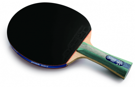 (R5002 DHS T.T. BAT (LONG HANDLE AND PIMPLE IN & I-מחבט טניס שולחן מוכן